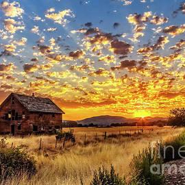 A Vivid Sunrise by Robert Bales