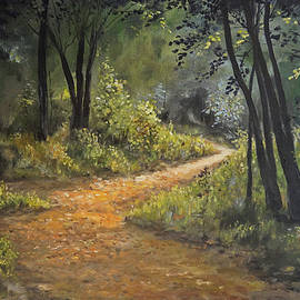 A Walk in the Woods by Alan Lakin