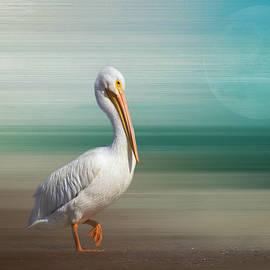 A Walk on the Wild Side by Kim Hojnacki