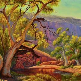 Christopher Vidal - A Warm afternoon at Ormiston Gorge, NT