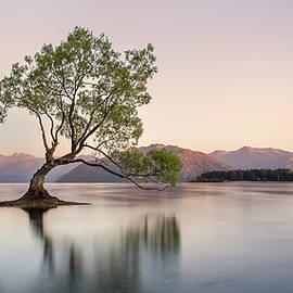 Darren Patterson - A warm Wanaka Sunrise