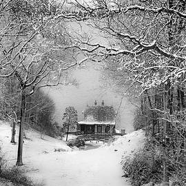 A Winter's Tale In Centerport New York by Alissa Beth Photography