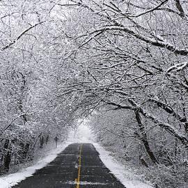 Kathi Mirto - A Winter