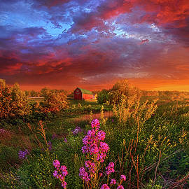 Phil Koch - A Wisconsin Story