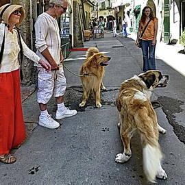 Street Meeting by Lyuba Filatova