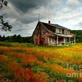 Abandon House by Steve Brown