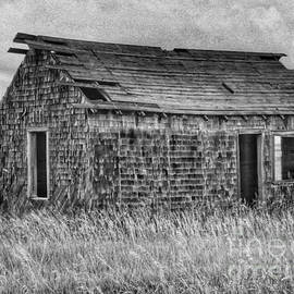 Abandonded On The Plains by Tony Baca
