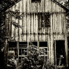 Abandoned Barn by Denise Harty