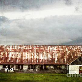 Judy Wolinsky - ABANDONED DAIRY FARM