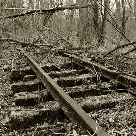 Abandoned Railroad 2 by Scott Hovind