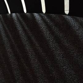 Damijana Cermelj - Abstract 01