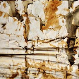 Kae Cheatham - Abstract 1317 Old Wallpaper as Landscape