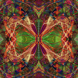 Abstract Butterfly Wings by Grace Iradian