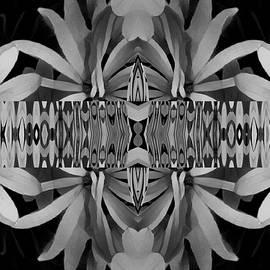 Nancy Pauling - Abstract Daisy