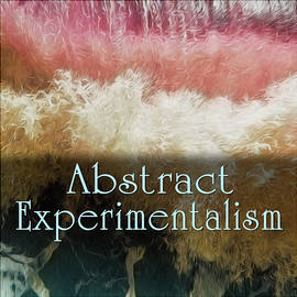 Abstract Experimentalism by Becky Titus