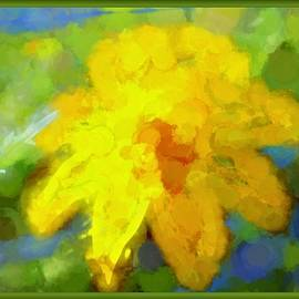Debra Lynch - Abstract Flower