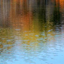 Arlane Crump - Abstract Lake Reflection