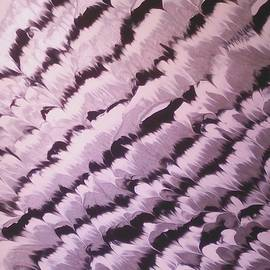 Marcela Hessari - Abstract nr 33