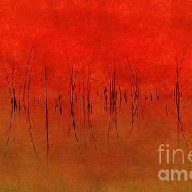 Andrea Kollo - Abstract Sunset