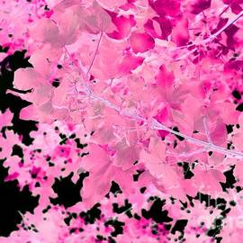 Abstract Tree Landscape Dark Botanical Art, Green, Black And Pink by Itsonlythemoon