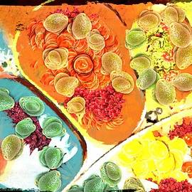 Catherine Lott - Abstract Upside Down Salad