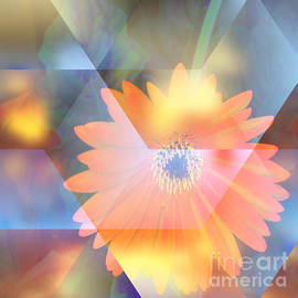 Beverly Guilliams - Abstract Your Flower