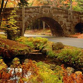 Acadia Stone Bridge by Alana Ranney
