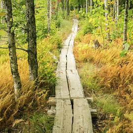 Edward Muennich - Acadian trail