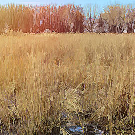 Across The Winter Marsh by David King