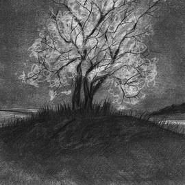 J Ferwerda - Advice From A Tree