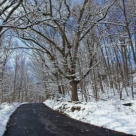 Karol Livote - After The Snowfall