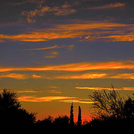 Mark Myhaver - Afterglow Silhouette h49