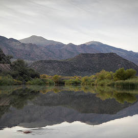 Afternoon Reflections by Cathy Franklin