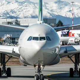 Airbus A330 Alitalia Nose EI-EJI