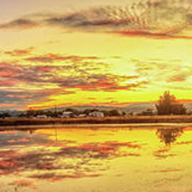 Airport Pond by Robert Bales