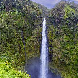Akaka Falls by Bill Tiepelman