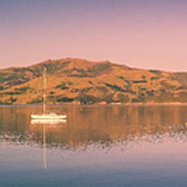 Akaroa Harbor New Zealand by Joan Carroll