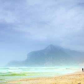 Foggy beach by Alexey Stiop