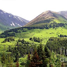 Chuck Kuhn - Alaska Scenery II
