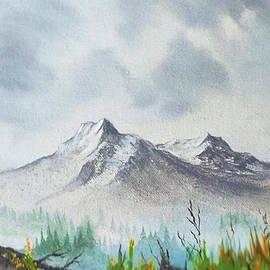 Alaska Wilderness by Teresa Ascone