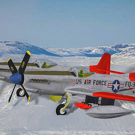 Tommy Anderson - Alaskan Air Command Twin Mustang - Oil