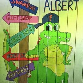 Denise Mazzocco - Albert The Alligator