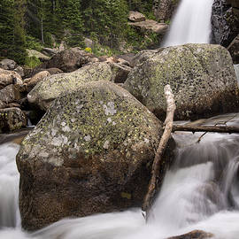 Alberta Falls Rmnp by Lee Kirchhevel