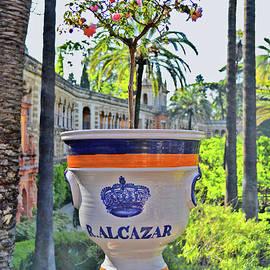Andy Za - Alcazar Gardens.