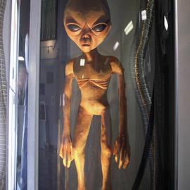 Alien in Stasis, UFO Museum, Roswell, New Mexico, USA by Derrick Neill