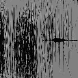 Alligator In The Reeds by Ed Gleichman