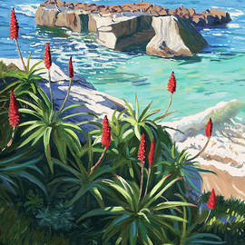 Aloes Peeking from Shadows - Steve Simon