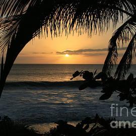 Aloha Aina the Beloved Land - Sunset Kamaole Beach Kihei Maui Hawaii by Sharon Mau