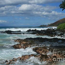 Aloha Island Dreams Paako Beach Makena Secret Cove Hawaii by Sharon Mau