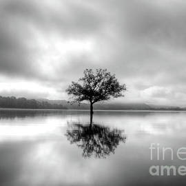 Alone BW by Douglas Stucky